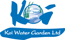 Koi Water Garden logo: Top quality Japanese Koi at sensible prices