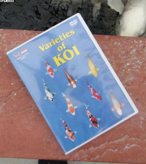 DVD Koi Varieties
